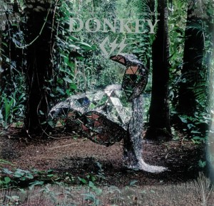 CSS-Donkey-446868
